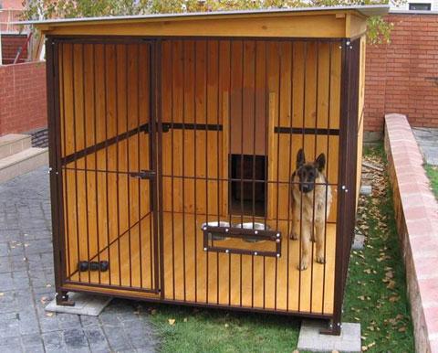 Вольеры для собак фото